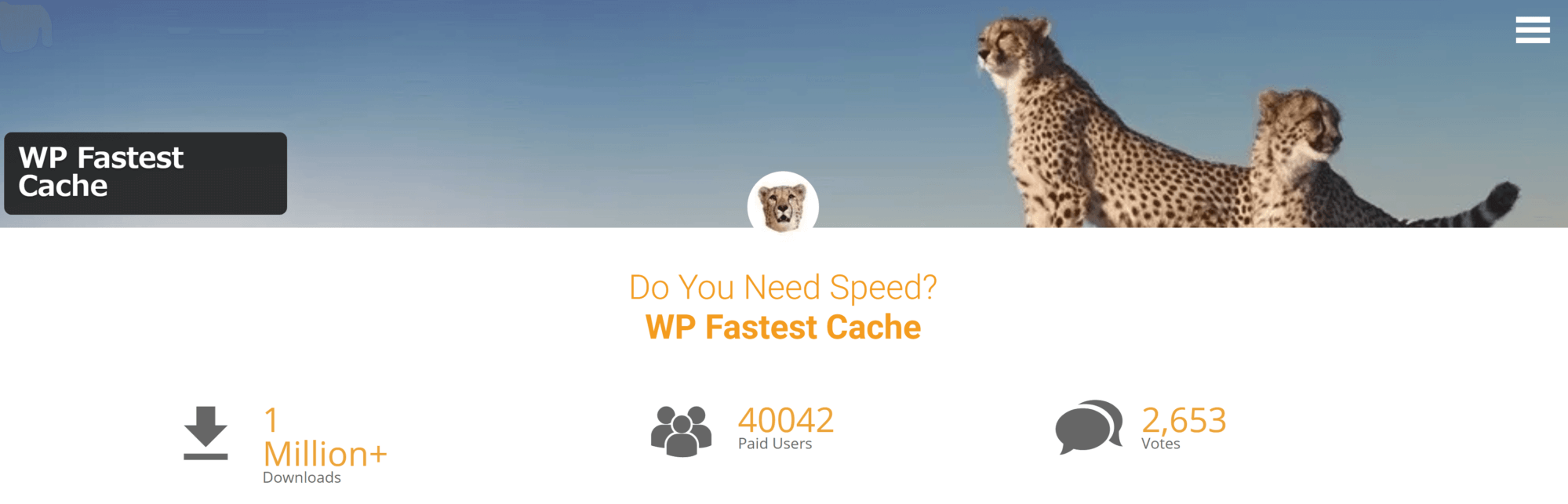 wp-fast-cache-main-page